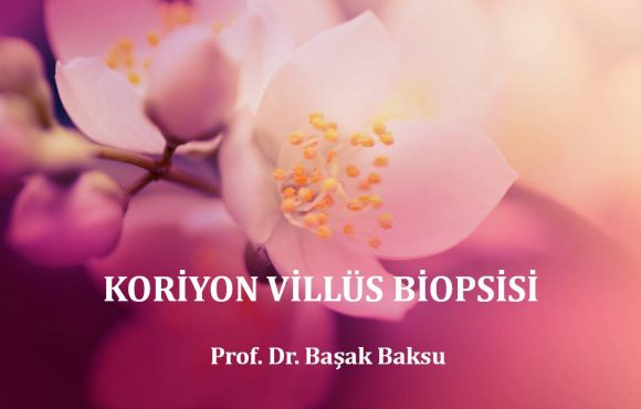 Koriyon Villüs Biyopsisi