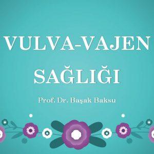Vulva Vajen Sağlığı