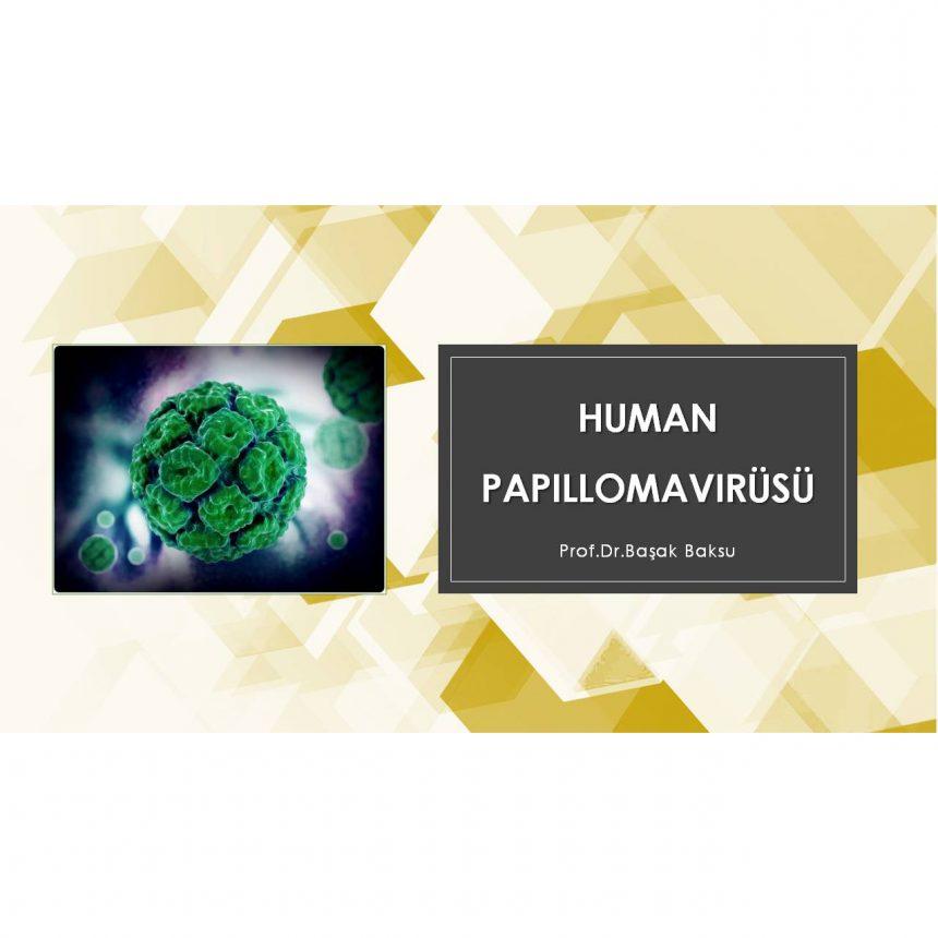 Human Papillomavirüsü (HPV)